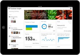 SAP Customer Insight